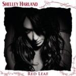 Introducing Shelley Harland